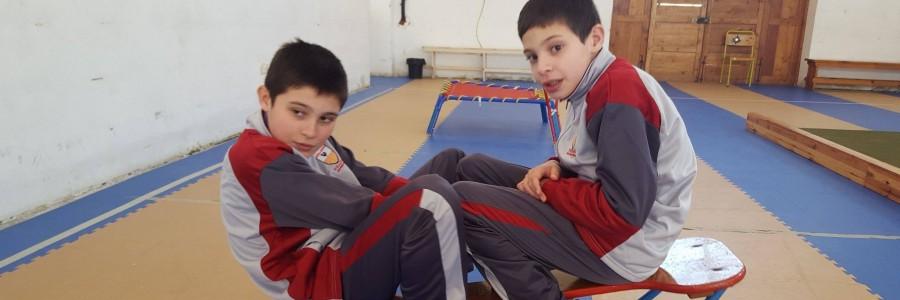 Introducing Gymnastics